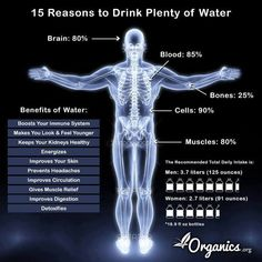 15 Reasons To Drink More Water