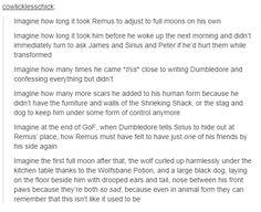 the marauders - remus lupin