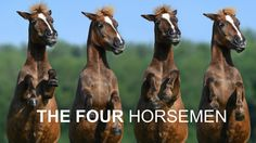 The Four Horsemen: The Antidotes — The Gottman Relationship Blog