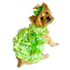 Jewel Green Satin and Green, White and Gold Organza Dress -Perfect for the Holidays or any special occasion! Made with a Very High End Jewel Green Satin with Green, White and Gold Organza. It Features 7 Skirt layers of Satin and Organza. The collar is ...