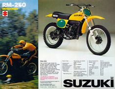 1977 Suzuki RM250 Owned this after graduating from a 125 LOVED the power band and the way it handled.
