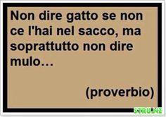 Antico proverbio italiano