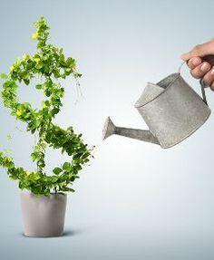 Bien comprendre les subventions gouvernementales versées dans un REEE