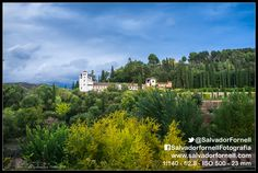 #laAlhambradeldia 216  http://www.flickr.com/photos/salvadorfornell/8601118034/lightbox/  http://www.salvadorfornell.com