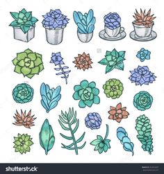 Illustration of Hand drawn vector set of succulents. Cute trendy design elements for decor needs. vector art, clipart and stock vectors. Succulents Drawing, Cactus Drawing, Growing Succulents, Floral Drawing, Watercolor Painting Techniques, Plants Are Friends, Cute Doodles, Plant Illustration, Chalk Art