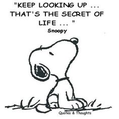keep looking up... that´s the secret of life...