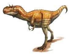 Gorgosaurus by daitengu