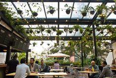Los hottest spots para disfrutar de una cerveza