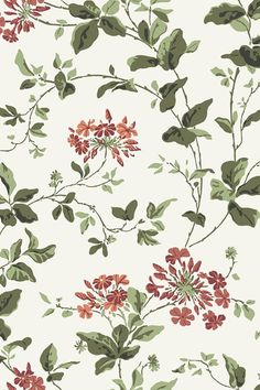 Discover hundreds of wallpaper ideas on HOUSE - design, food and travel by House & Garden including Plumbago from Cole & Son