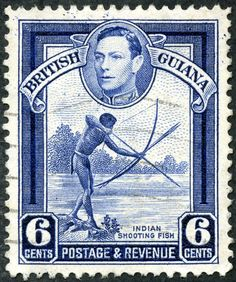 Stamp: Indian shooting fish (Guyana) (King George VI and Local Scenes) Mi:GY 311 British Guiana, Stamp World, Crown Colony, Colonial, British West Indies, Buy Stamps, Vintage Stamps, King George, Commonwealth