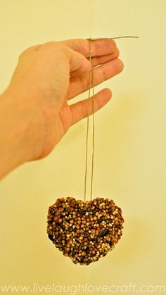 Heart Bird Feeders: Directions