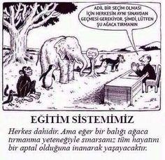 Eğitim Sistemimiz - Günün birinde bu sistem değişir mi ?