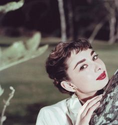 audrey hepburn Very beautiful and great actress