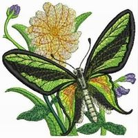 Embroidery digitizing services to design beautiful patterns.  http://embroiderydigitization.wordpress.com/2013/10/17/digitizing-a-smart-way-to-get-immaculate-patterns/