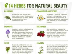 14 Herbs For Natural Beauty