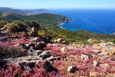Corsica, Blog Voyage, Tour, Water, Voici, Outdoor, Live, Inspiration, Viajes