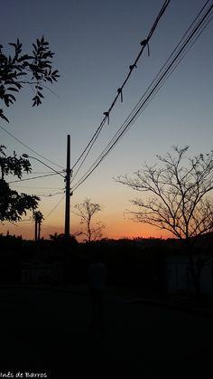 Natureza no Fio - Vinhedo/SP - agosto/2015 - Por Inês de Barros