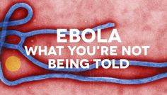 Monsanto Sponsored Ebola Vaccine Will Kill More People Than the Ebola Itself.  The problem is created and a desired solution is enacted. Meaning the ebola virus was manufactured and released in order to sell the vaccine.