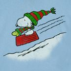 Snoopy and Woodstock flying down a hill in a supper dish