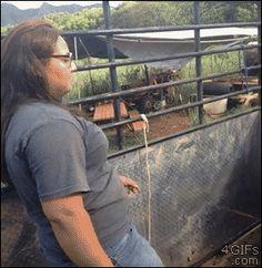 Estas cabras negándose a aceptar el baile de esta mujer: | 33 GIFs de 2013 que te harán reír cada vez que los mires