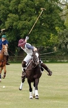 Picassa, my horse in her polo days...