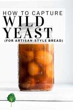 Tumblr Fruit, Artisan Bread Recipes, Sourdough Recipes, Bakers Yeast, Yeast Starter, Homemade Sauerkraut, Biscuit Sandwich, Water Recipes, Pizza