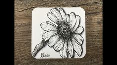 Quick PREVIEW of tomorrow's video. Botanical / Nature inspired drawing - Daisy #penandink #lineart - YouTube Drawing Flowers, Old Video, Botanical Drawings, Nature Inspired, Learn To Draw, Zentangle, Line Art, Daisy, Ink
