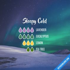Sleepy Cold - Essential Oil Diffuser Blend