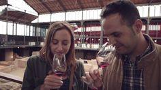El vino de un euro que engañó a los entendidos