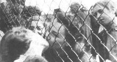 The last farewell to children picked up for deportation meaning immediate death under the Allgemeine Gehsperre, September 1942.