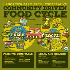Lancaster Farm Fresh   Locally Rooted, Sustainably Minded. A non-profit organic farmers Co-op.