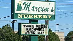 Marcum's Nursery in Oklahoma City has a knowledgable staff, great prices, and a large variety of plants