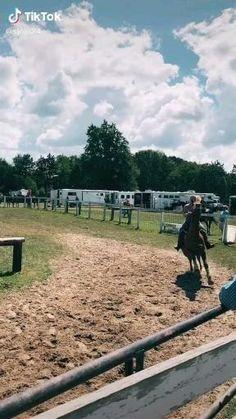Cute Horses, Pretty Horses, Horse Love, Beautiful Horses, Barrel Racing Horses, Barrel Horse, Western Riding, Horse Riding, Funny Horse Videos