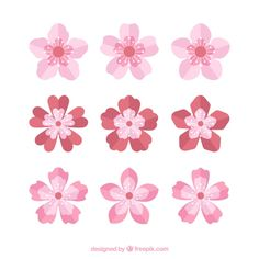 Collection of pretty cherry blossoms in flat design Free Vector