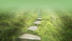 the misty path ahead