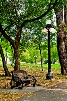 Taken on Waterfront Drive, in the Exchange District, in Winnipeg, Manitoba. Image by Carla Dyck Western Canada, Seasons Of Life, The Province, Background Pictures, Canada Travel, Historical Sites, Continents, Canopy, Picture Video