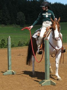 horse training obstacles – Yahoo Image Search Results horse training obstacles – Yahoo Image Search Results - Art Of Equitation Horse Training Tips, Horse Tips, Extreme Trail, Westerns, Horse Games, Horse Riding Games, Trail Riding Horses, Horse Arena, Horse Exercises