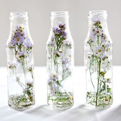 Ways to Repurpose Those Beautiful Buds Display dried flowers by encasing them in a glass jar.Display dried flowers by encasing them in a glass jar. Dried Flower Arrangements, Dried Flowers, Flower Crafts, Flower Art, Flower Ideas, Flower Paper, Diy Flower, Vintage Mason Jars, Beautiful Bouquet Of Flowers