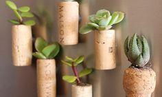 DIY Cork Planters - kreative Bastelideen mit Korken - fresHouse