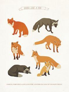 Quick, Like A Fox