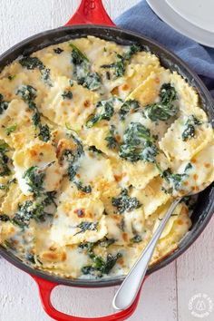 This Baked Spinach Ravioli Bake can be made and served in one skillet. Bonus, it can be on the table too in 30 minutes! This Baked Spinach Ravioli Bake can be made and served in one skillet. Bonus, it can be on the table too in 30 minutes! Tasty Vegetarian Recipes, Veggie Recipes, Healthy Dinner Recipes, Cooking Recipes, Vegetarian Dishes For Dinner, Vegetarian Dishes Healthy, Healthy Lunch Wraps, Vegetarian Pasta Dishes, Healthy Food