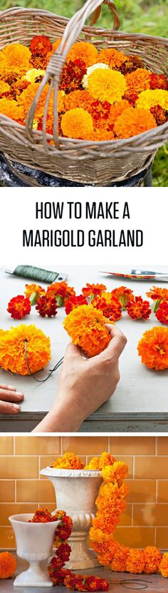 Make a beautiful marigold garland in minutes with our step-by-step instructions! #flowers #DIY