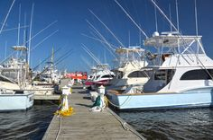 """""""At the Heart of It All"""" - Outer Banks Marina in Wanchese Seafood Industrial Park. Read in Outer Banks This Week Magazine"""