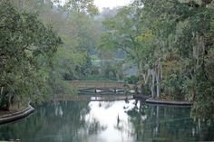 Once inhabited by indigenous Timucuans and Native American Creeks who hunted and fished the region, Wekiwa Springs State Park sits on 7,800 majestic acres complete with nature trails, wildlife, a 72-degree (year around) freshwater spring and authentic Florida waterways. - See more at: http://www.authenticflorida.com/articles/where-to-go/old-florida-beckons-at-wekiwa-springs
