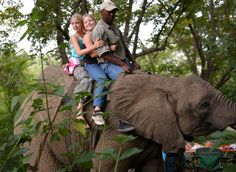 """""""Elephant Whispers""""  Located on the banks of the Sabi River, Hazyview, Elephant Whispers is a haven for six rescued African Elephant. Elephant Whispers welcomes guests of all ages to share in the excitement of close encounters with these magnificent creatures. Read & see more on http://www.wheretostay.co.za/elephantwhispers"""
