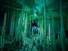 Following the guideline her life depends on, a diver threads the needle through a stalagmite forest in Dan's Cave on Abaco Island. A single, misplaced fin kick can shatter mineral formations tens of thousands of years old.