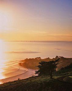 The ultimate wine+surf spot? Santa Rita Hills + Rincon Point