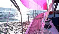 Fair Grounds, Travel, Sailboats, Sailing, Thanks, Sporty, Vacation, Viajes, Destinations