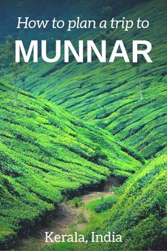 Things to do in Munnar: how to visit tea plantation in India, trekking in South India, scenic places to visit in Munnar and other tips to add this town to Kerala travel itinerary. Munnar is one of the most memorable India travel experiences - find out travel tips to plan a better trip. #Kerala #incredibleIndia