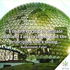 How can we better design society according to Nature's principles? Buckminster Fuller, Great Thinkers, Im Trying, The Twenties, Cool Designs, Nature, Naturaleza, Nature Illustration, Off Grid
